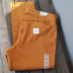 NWT Old Navy Pixie Ankle pants gold, rust sz 16